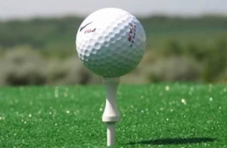 golf_club-300x239